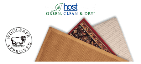 Rug Cleaning with Hostdry